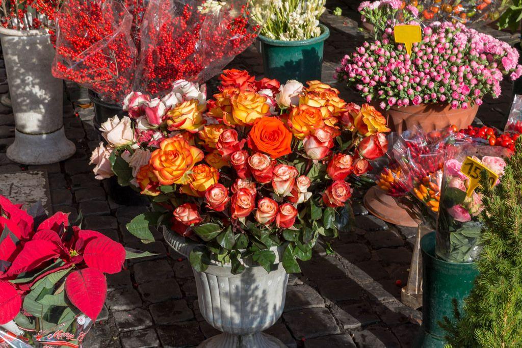 Rosen in einem Gefäß auf dem Markt in ROm