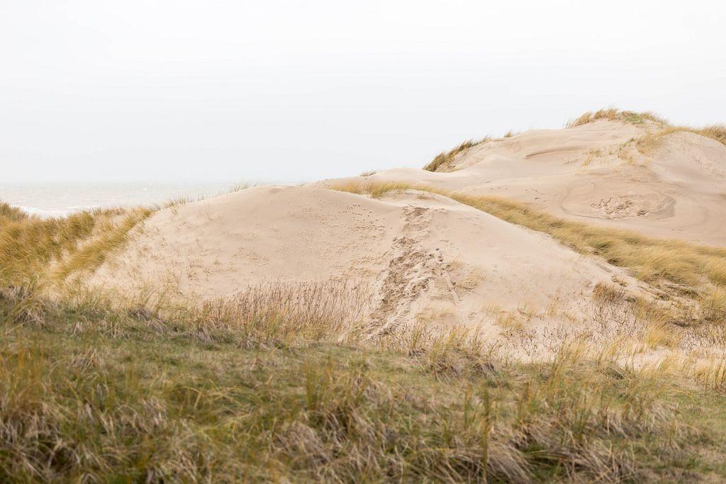 Sanddünen am Strand in Camperduin, Niederlande