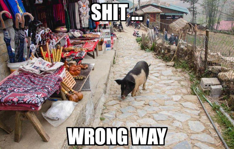 Shit ... wrong way