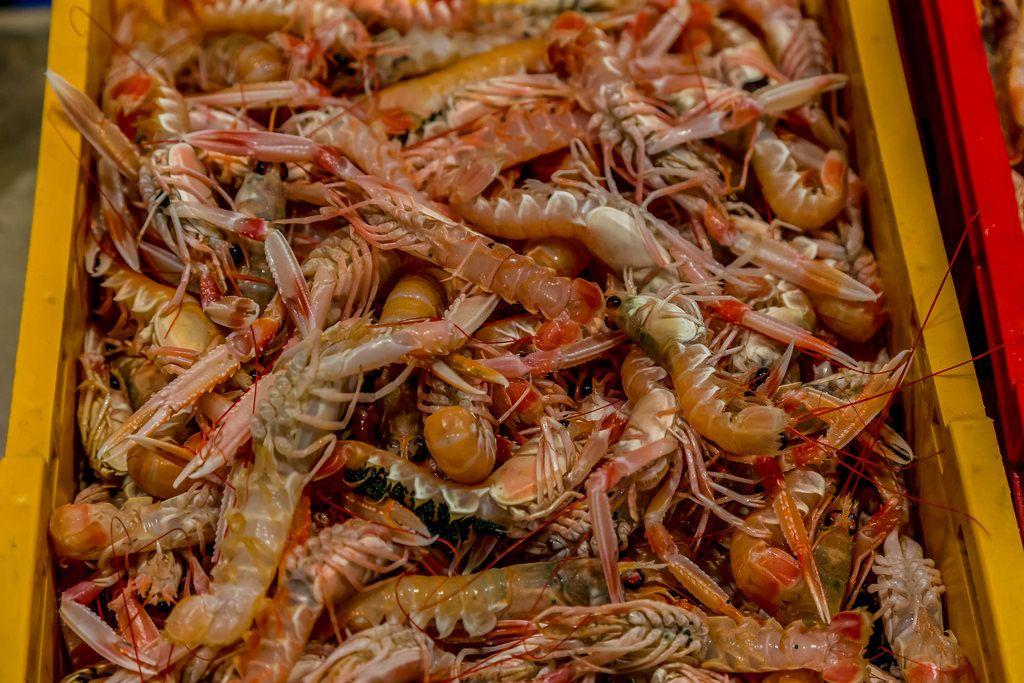 Shrimps on fish market
