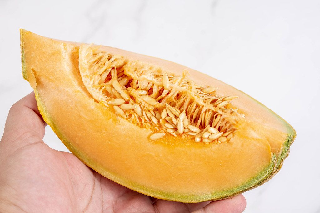 Sliced Melon in the hand above white background