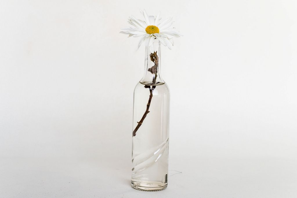 Small glass vase with flower