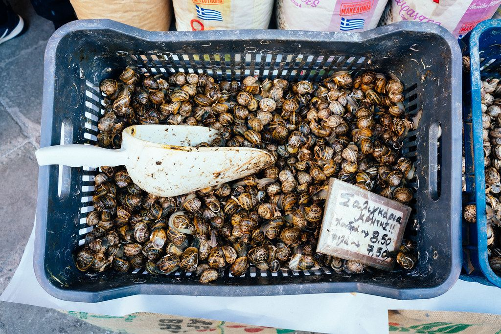Snails for sale as a snack