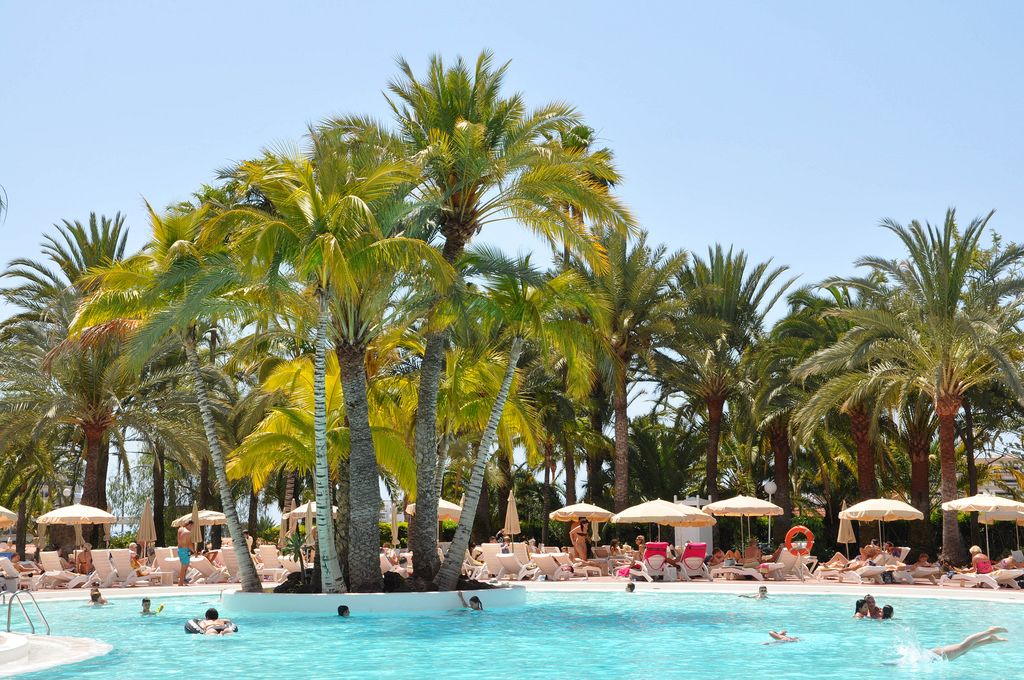 So sieht Garten Eden aus: Sonne, Schwimmbad und Palmen