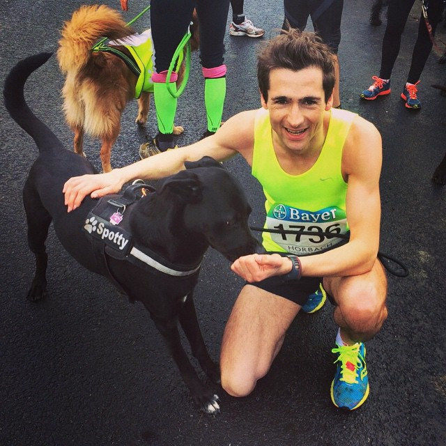So stolz auf unseren Hund Spotty. 2. Platz beim 6-Pfoten-Lauf in Leverkusen. 2,5km in 8:09 Minuten. #running #sports #canicross #agility #petsagram #pets #animals #dogs #laboftheday #lab #puppy #training #leverkusen #happy #picoftheday #instapic #instadog