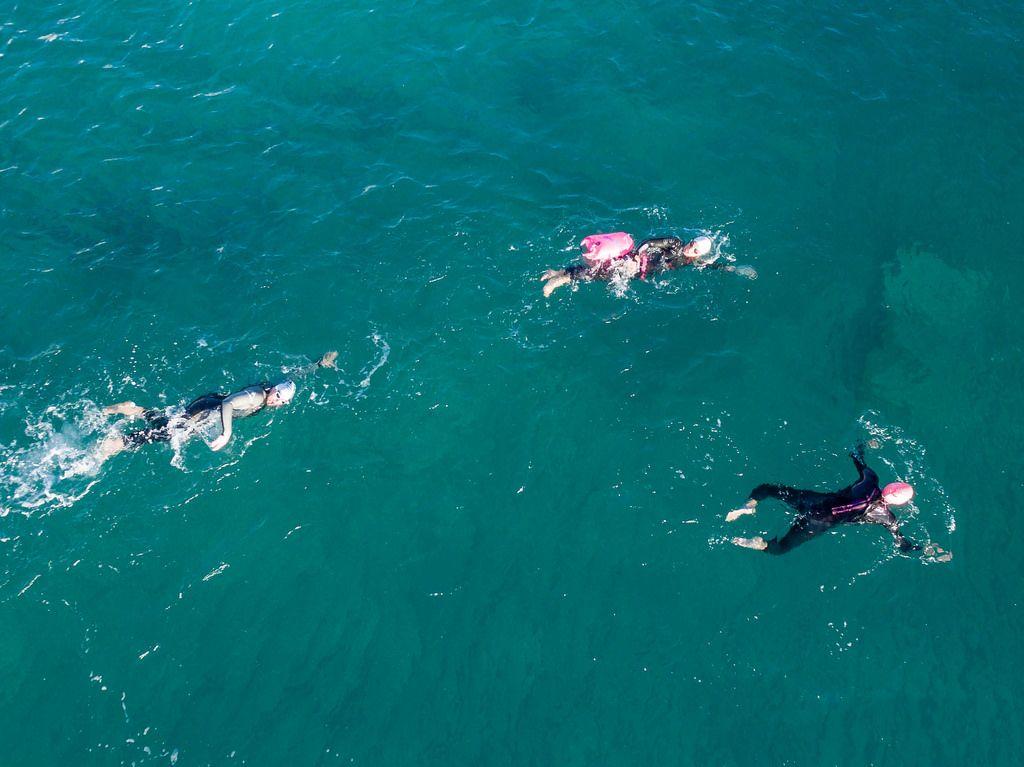 Sportler (Triathlon) beim Schwimmen - Ca'n Picafort, Mallorca
