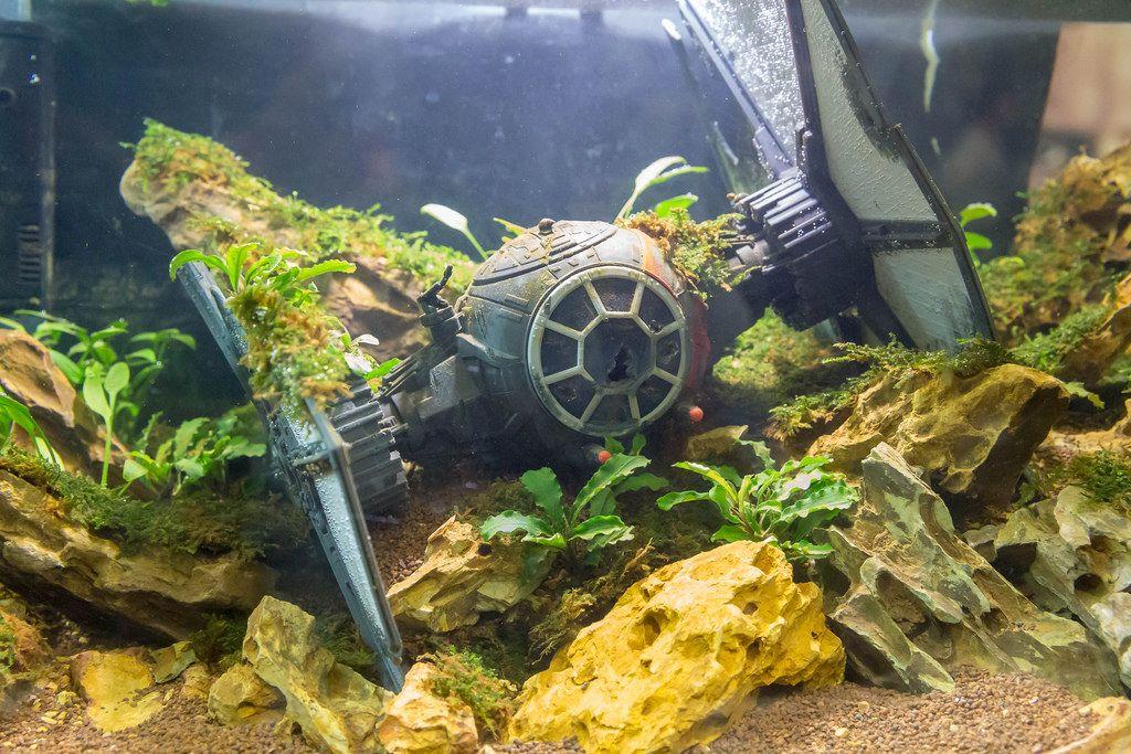Star Wars TIE Fighter nach Bruchlandung im Aquarium