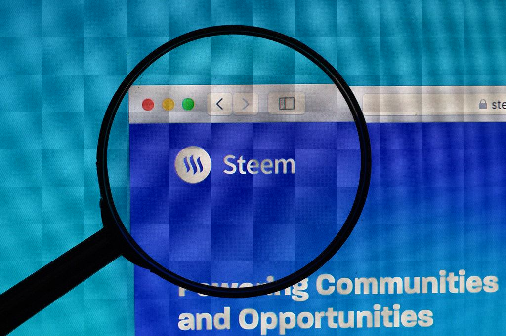 Steem logo under magnifying glass