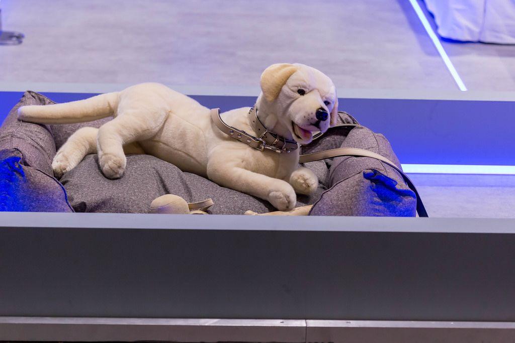 Stoffhund mit Leine auf einem Hundebett