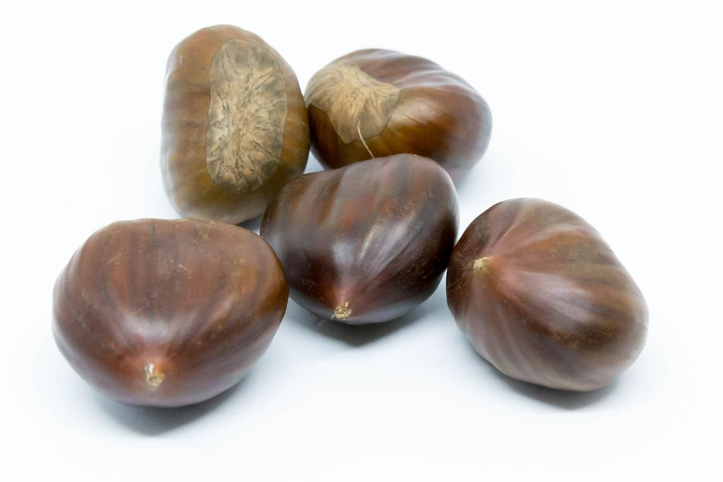 Sweet chestnuts on white background