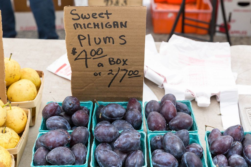 Sweet Michigan Plums - City Market, Chicago