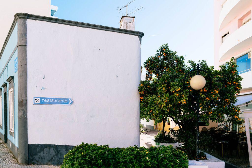 Tangerine tree in the backyard of authentic Portuguese restaurant / Mandarinenbaum im Hinterhof des authentischen portugiesischen Restaurants