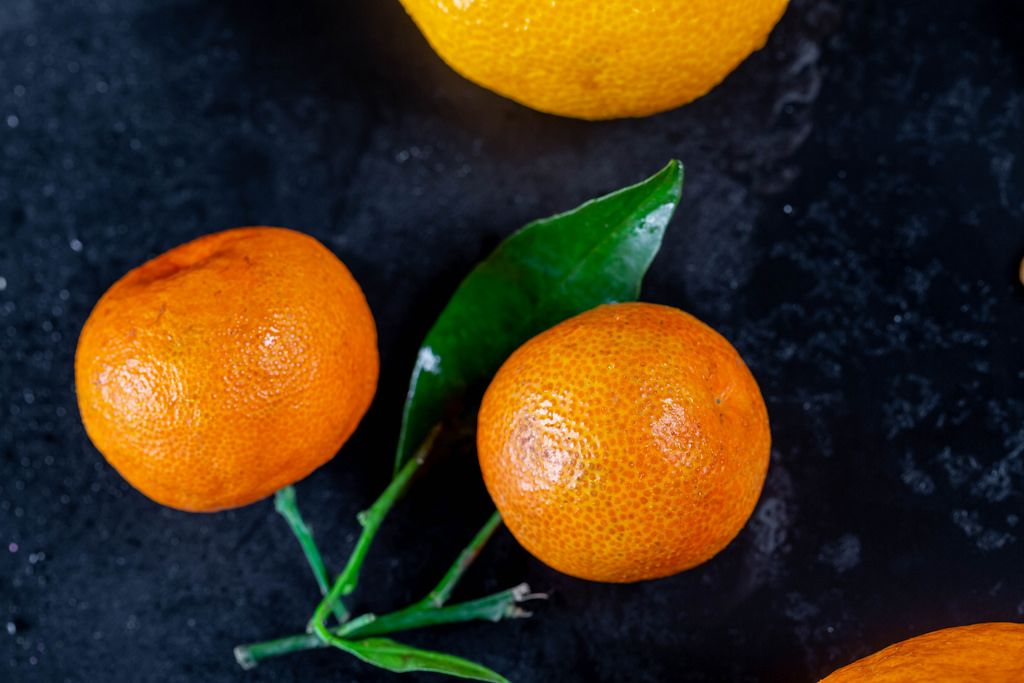 Tangerines on a branch with leaves