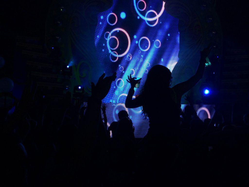 Tanzende Besucher mit der Light-Show im Hintergrund - Musikfestival Tomorrowland 2014