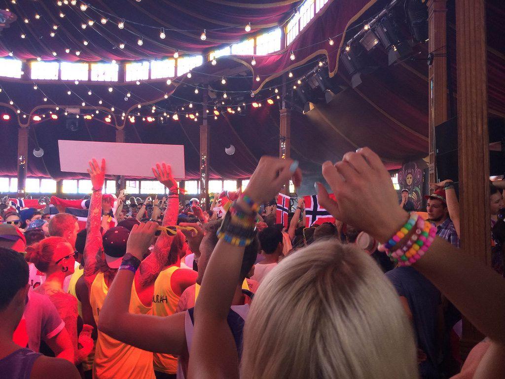Tanzende Besucher - Musikfestival Tomorrowland 2014