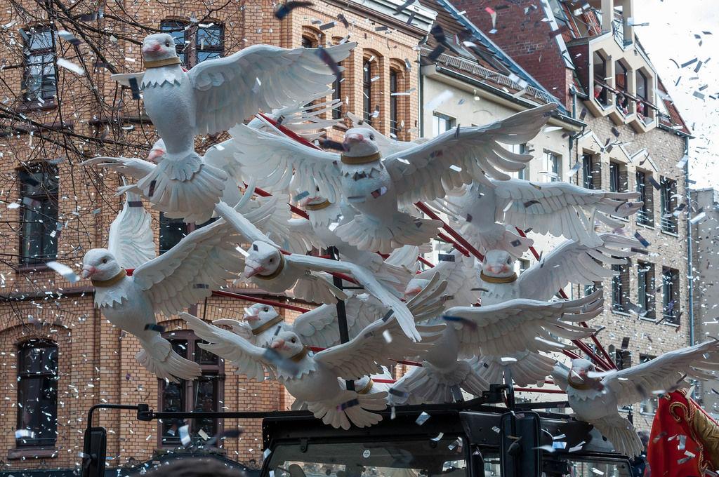 Tauben am Rosenmontagszug