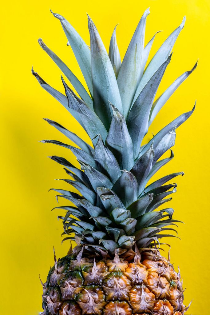 The tip of the pineapple on a yellow background