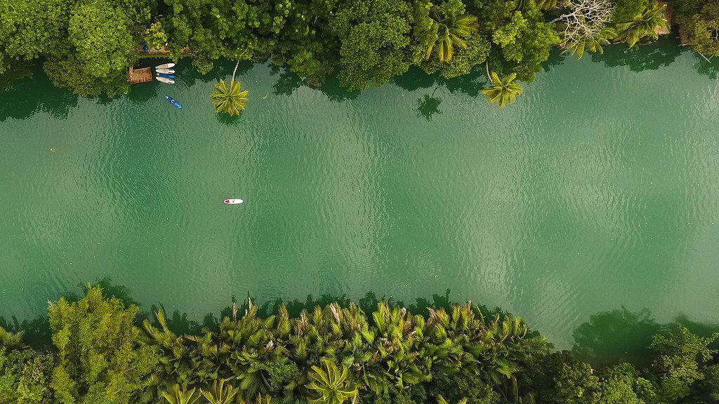 Top shot of a Kayak cruising through a river in Palawan Island, Philippines