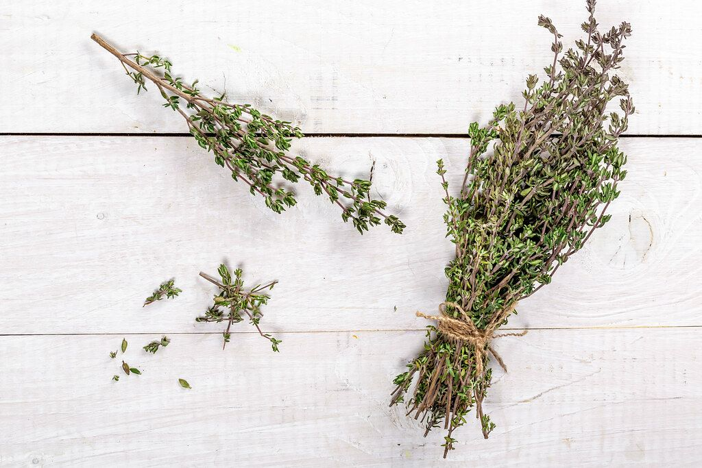 Top View Photo of Fresh Herb Thyme on a White Wooden Table