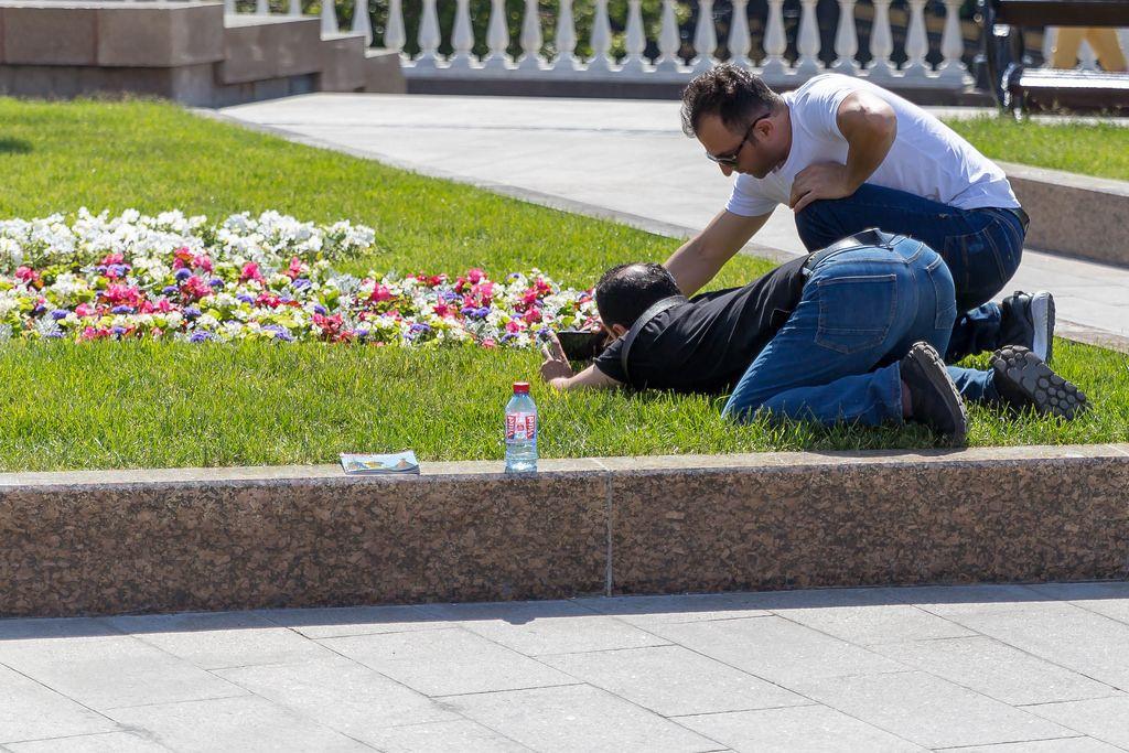 Touristen fotografieren Blumen mit dem Handy