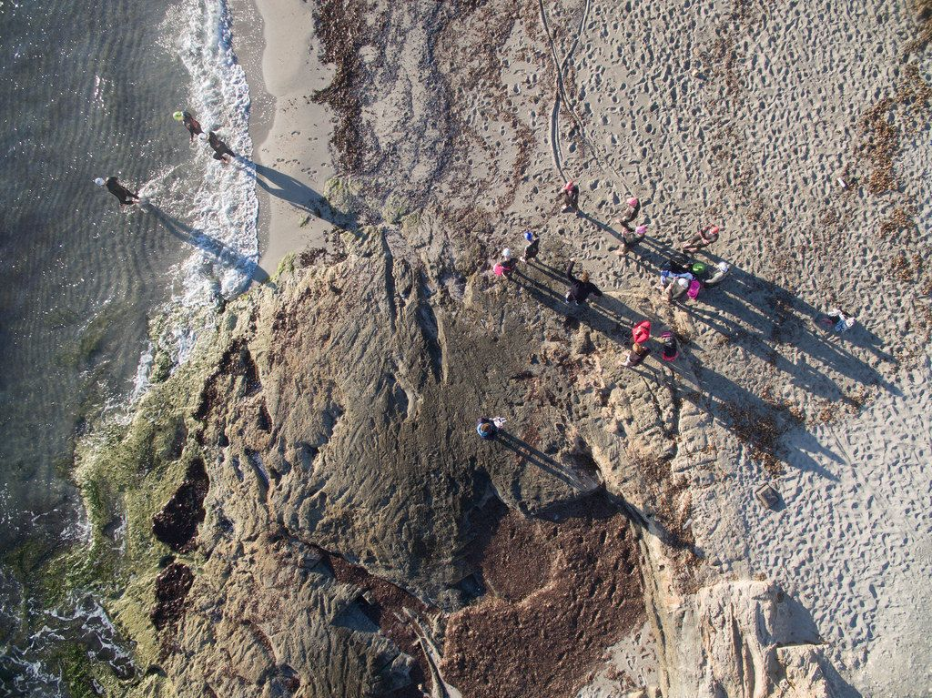 Triathlon-Sportler kurz vor Schwimmstart in Ca'n Picafort, Mallorca