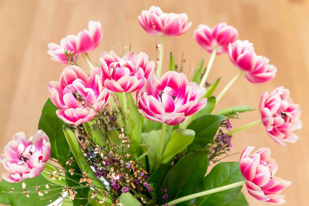 Tulpen und Wiesenblumen