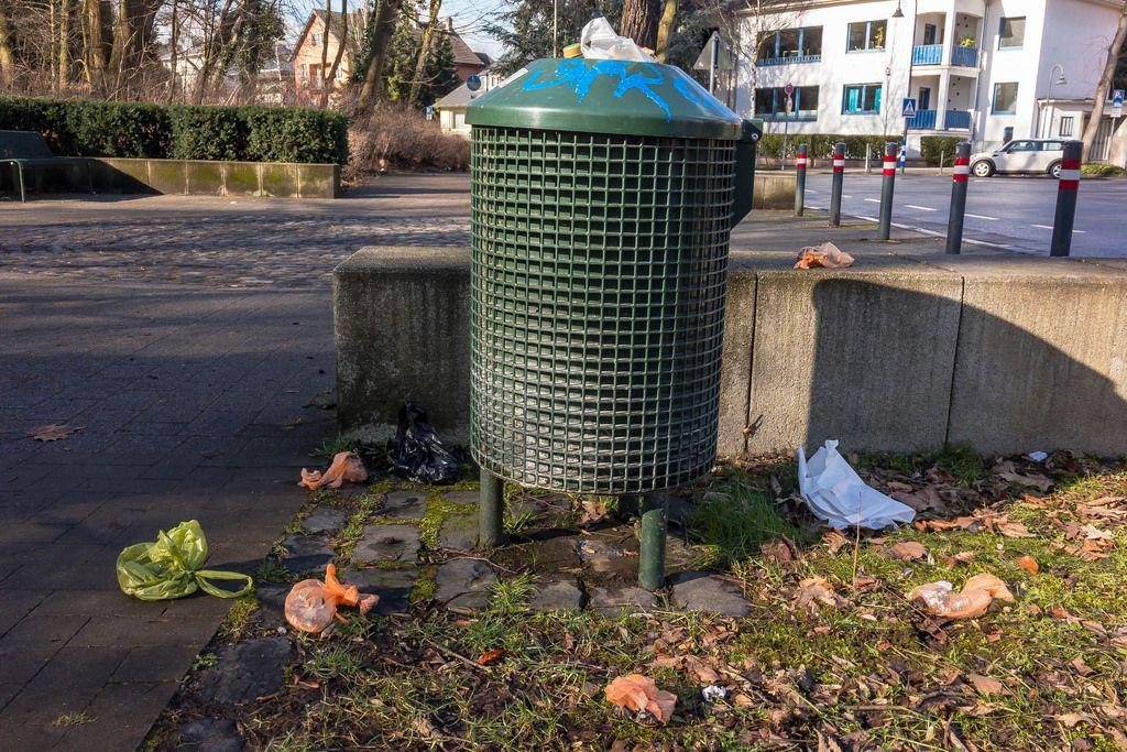 Übervolle Mülltonne im Park (dog shit / poo)