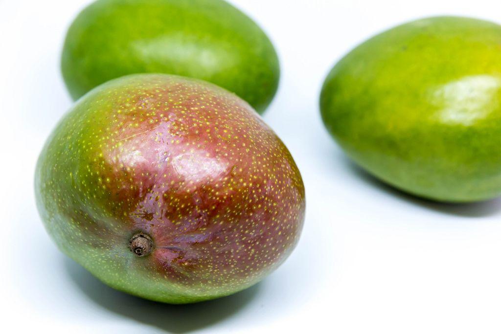 Unreife Mangos vor weißem Hintergrund