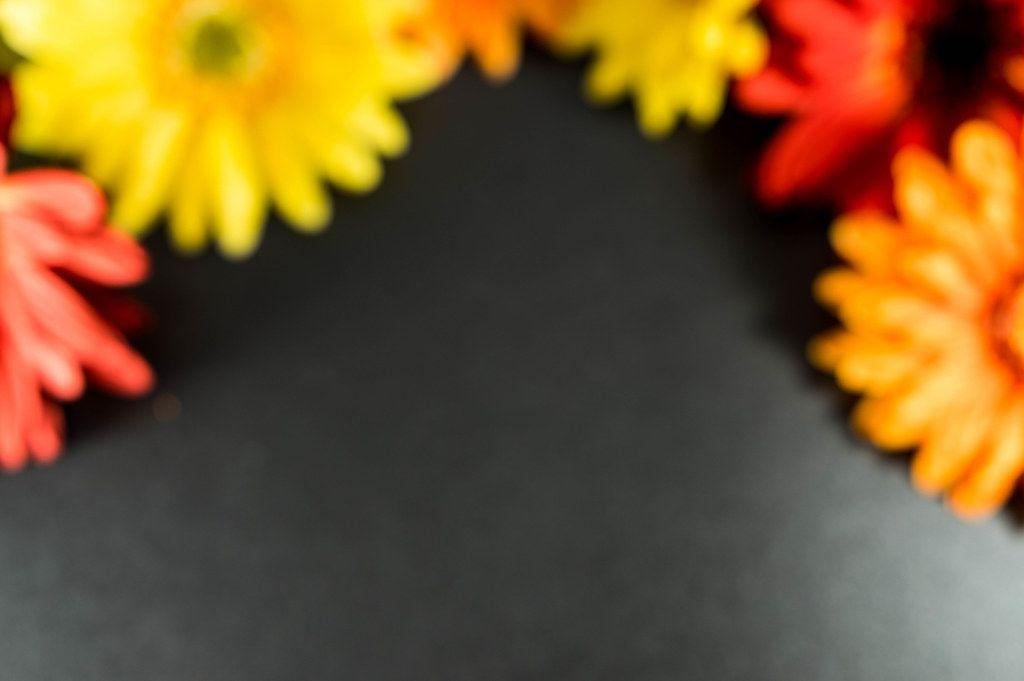 Verschwommene Blumen in gelb, rot und orange, auf schwarzem Hintergrund
