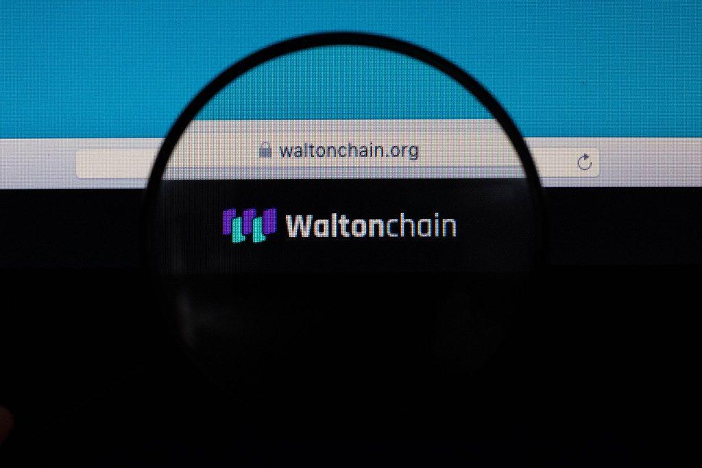 Waltonchain website under magnifying glass