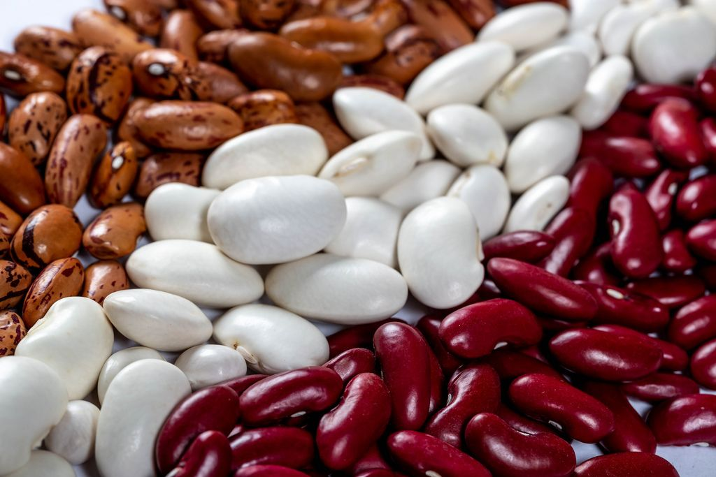 White, red and brown beans
