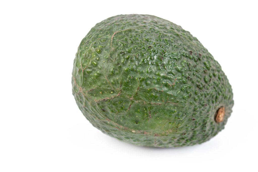 Whole fresh Avocado above white background