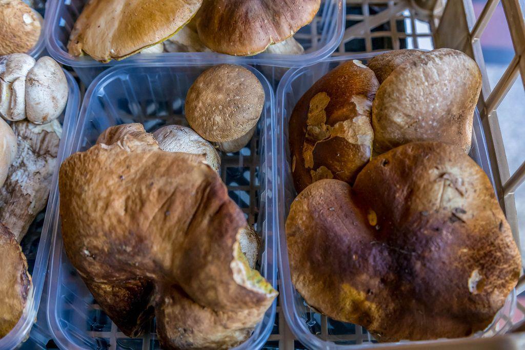 Wild mushroom boletus on marketplace
