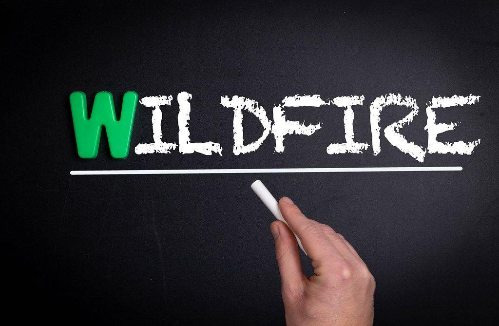 Wildfire text on blackboard