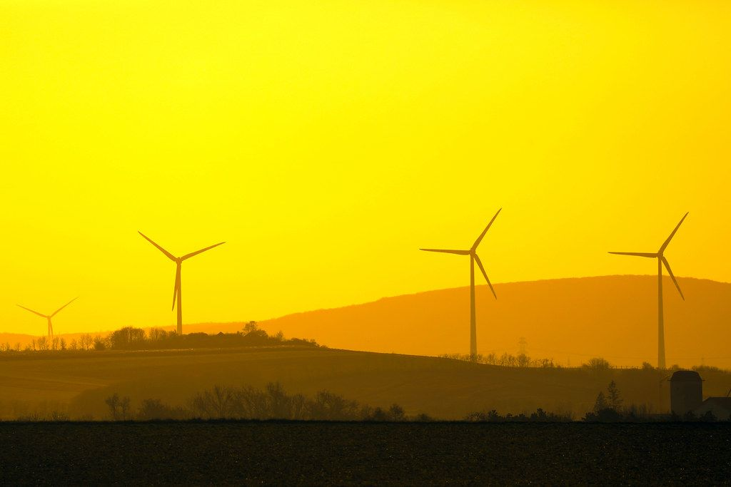 Wind farm at sunset, yellow sky