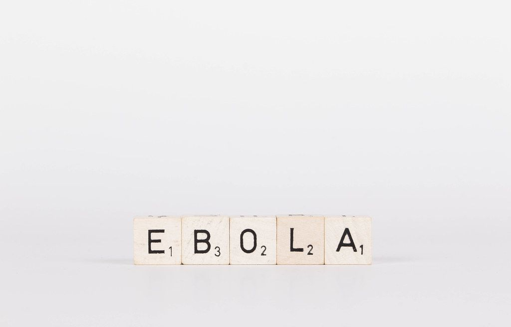 Wooden blocks with the word Ebola on white background