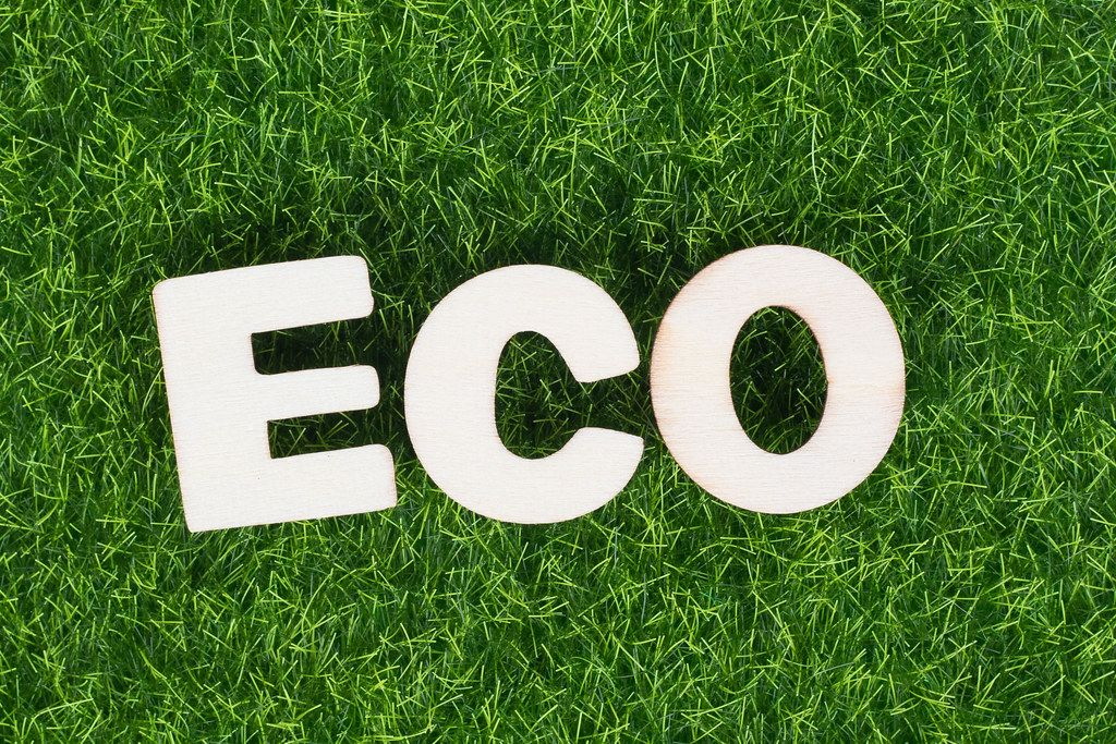 Word ECO on green grass background