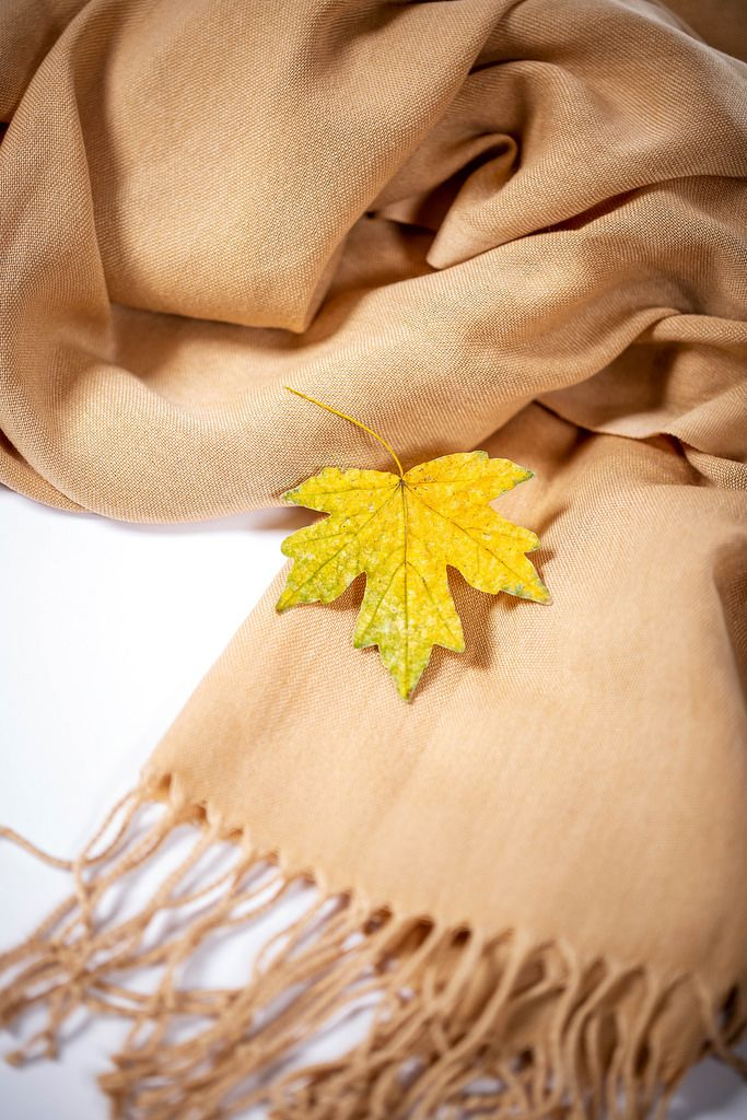 Yellow leaf with scarf on white background