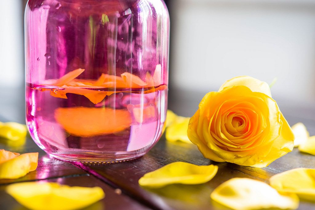 Yellow rose and petals in pink jar