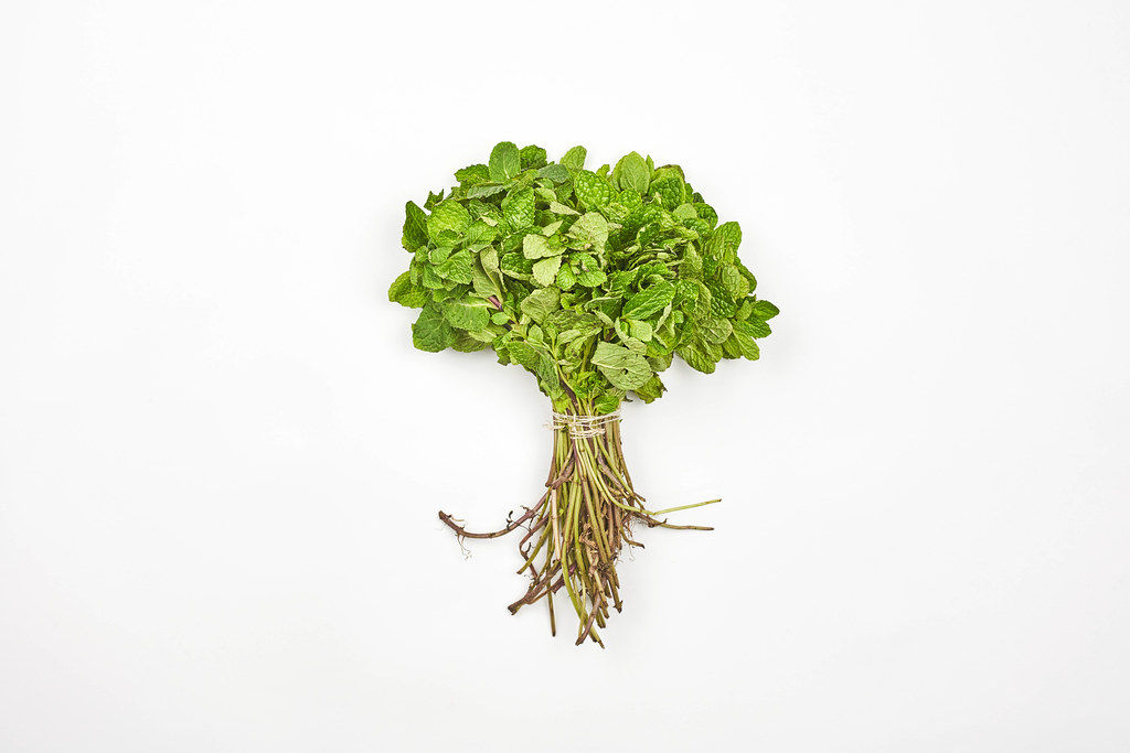 A bunch of mint tied with twine on white background