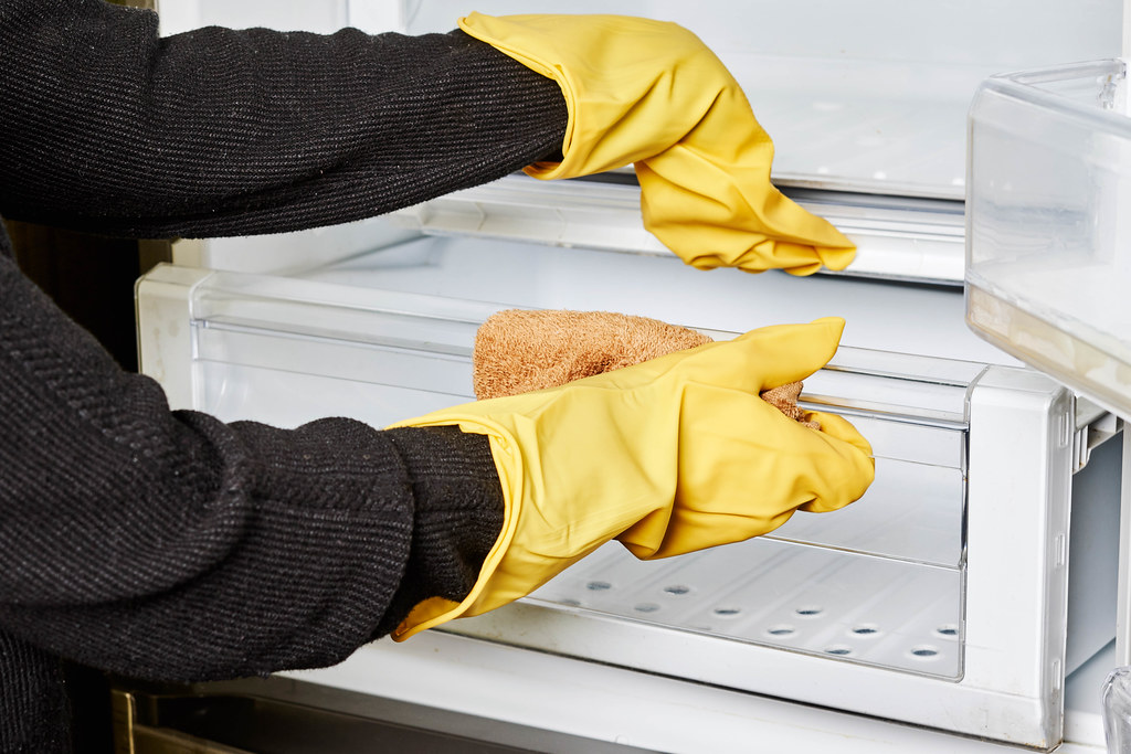 A female in rubber gloves cleans salad crisper drawers of the fridge