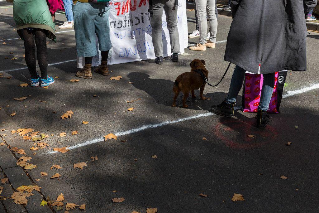 Abstand halten bei der Fridays for Future Demo in Corona-Zeiten mit markierten Stellen auf der Straße
