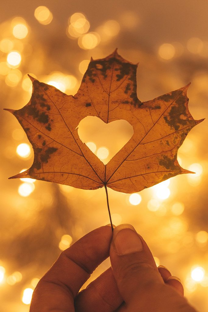 Beautiful bright autumn background with a maple leaf in a woman