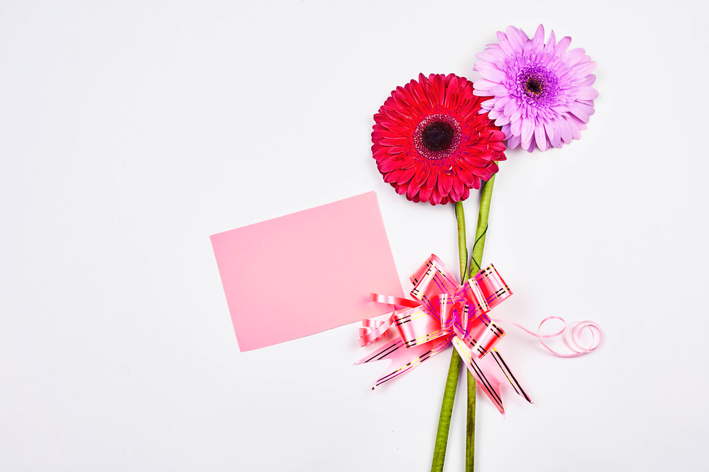 Beautiful daisy flowers with a blank card