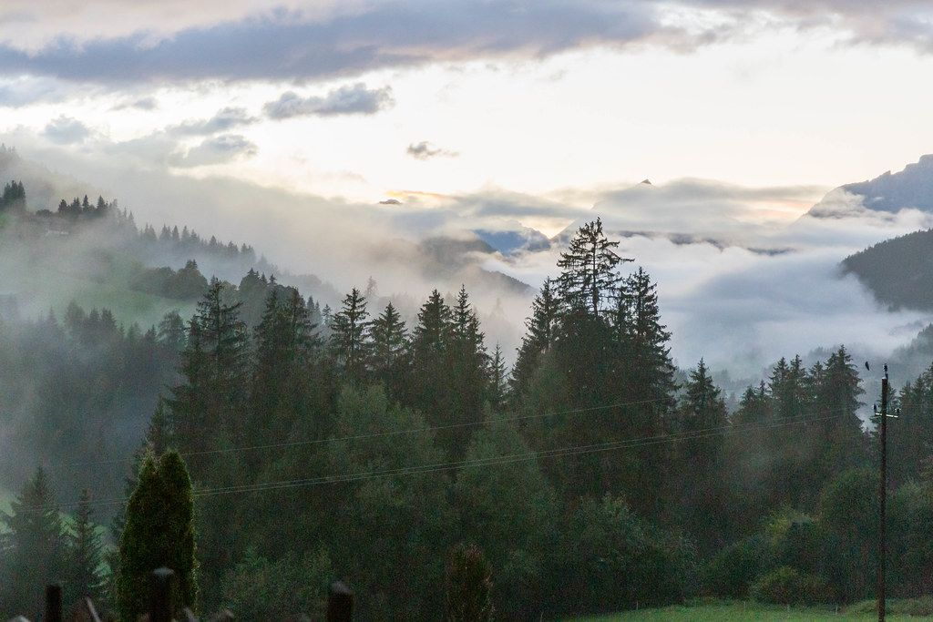 Bezaubernde Berglandschaft mit grünen Bäumen und tiefen Wolken in Tirol, Österreich