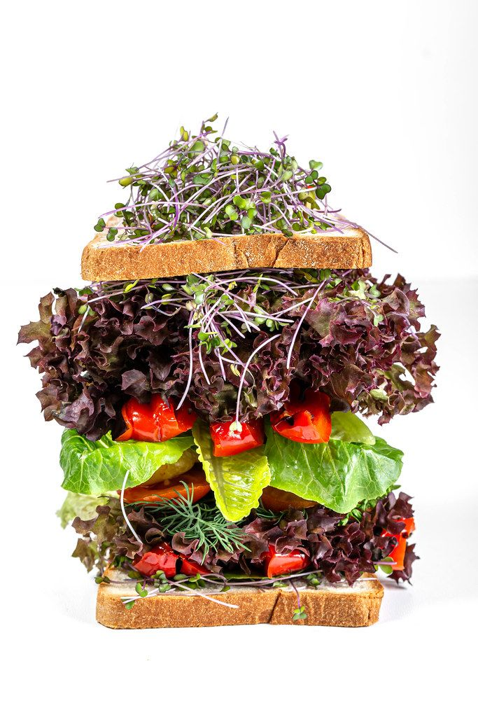 Big sandwich with vegetables, lettuce and microgreens cabbage on a white background