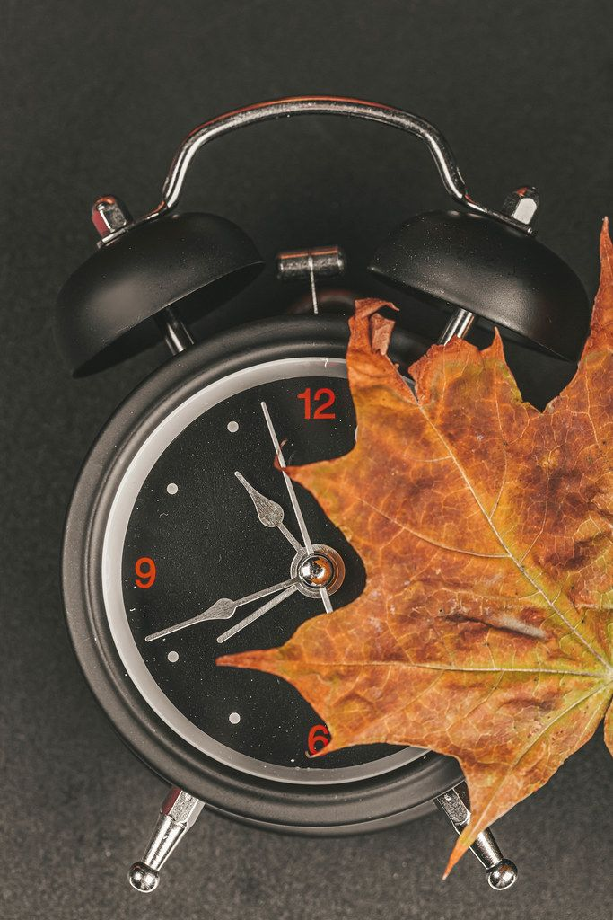 Black alarm clock with dry autumn maple leaf