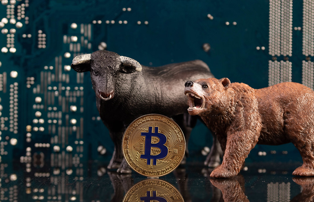 Black bull and brown bear with golden Bitcoin coin and computer parts in the background