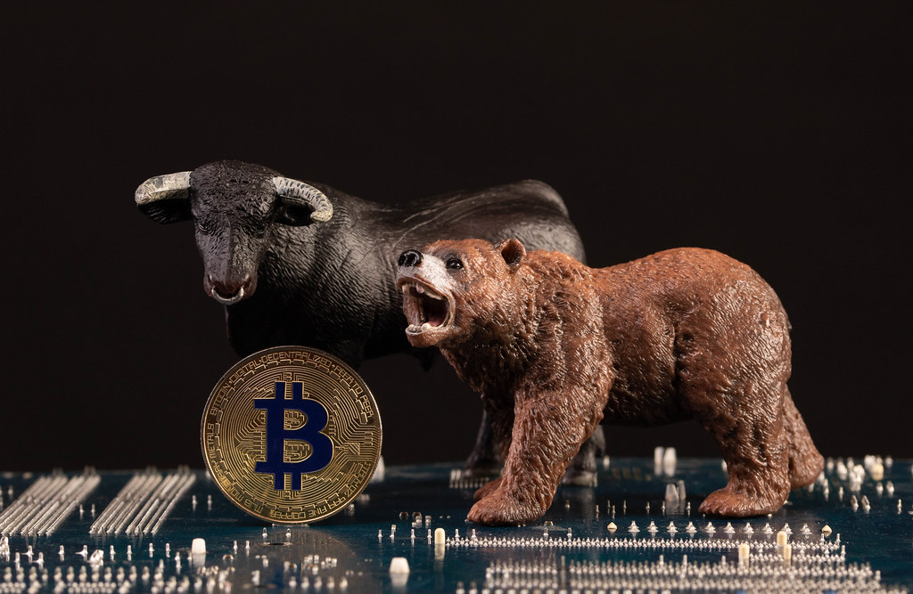 Black bull and brown bear with golden Bitcoin coin