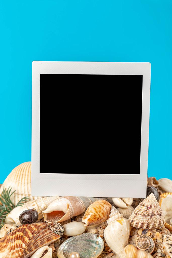 Blank polaroid photo positioned on seashells